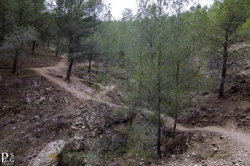 Castillo Asomada